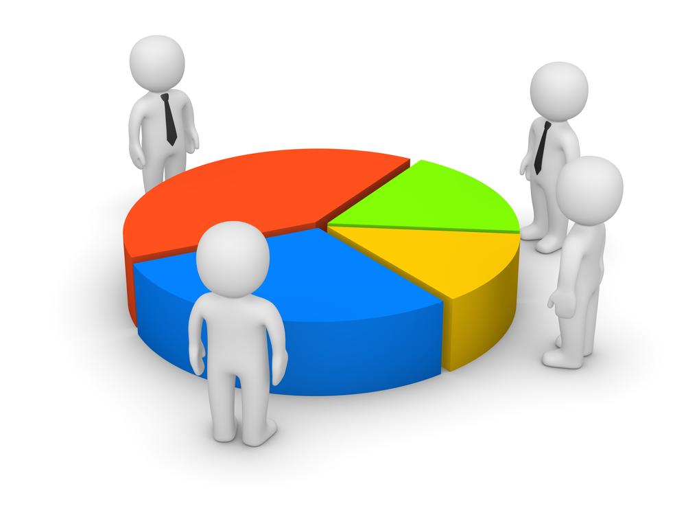 share capital and share holders of a company